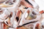 Κοχύλια για διακόσμηση - συσκευασία 25 τεμαχίων
