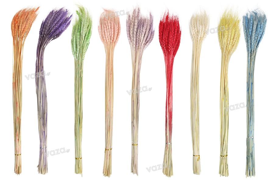Αποξηραμένα λουλούδια σε διάφορα χρώματα για στολισμό και διακόσμηση - 1 τμχ (μπουκέτο με περίπου 50 κλαδιά)