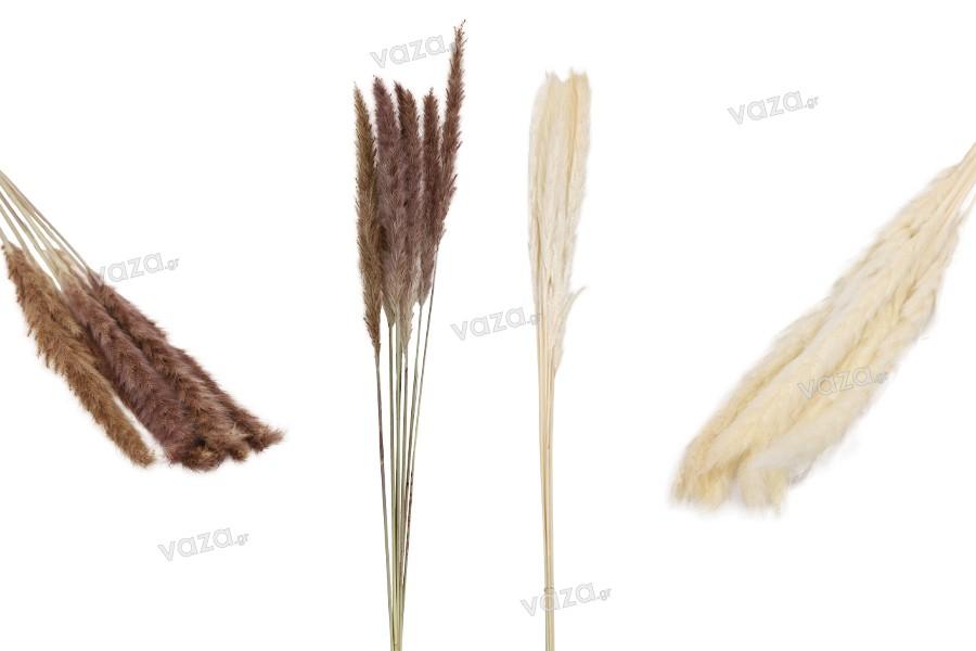 Αποξηραμένα λουλούδια για διακόσμηση - 1 τμχ (μπουκέτο με περίπου 7 κλαδιά)