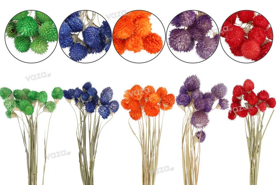 Αποξηραμένα λουλούδια για στολισμό και διακόσμηση - 1 τμχ (μπουκέτο με περίπου 15 κλαδιά)