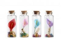 Bouteille de vœux en verre avec 12 boîtes en liège