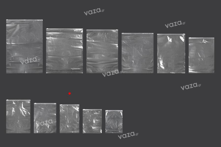 Σακουλάκια PE με φερμουάρ 200x300 mm - 50 τμχ