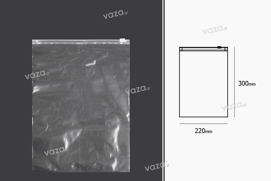Σακουλάκια PE με φερμουάρ 220x300 mm - 50 τμχ